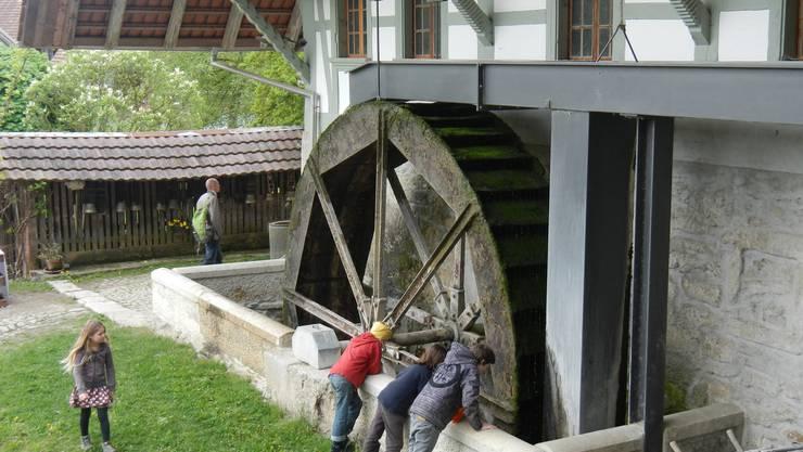 Das imposante Wasserrad der Mühle in Oberwil misst fünf Meter im Durchmesser.