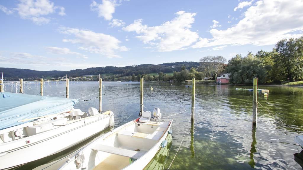Die vier Bootsmotoren wurden in Eschenz gestohlen und an das deutsche Bodenseeufer gebracht. (Archiv)