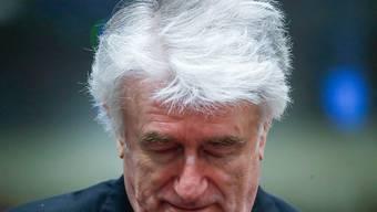 Die Anklage fordert lebenslang Gefängnis, die Verteidigung Freispruch: Der Berufungsprozess in Den Haag gegen Karadzic hat begonnen.