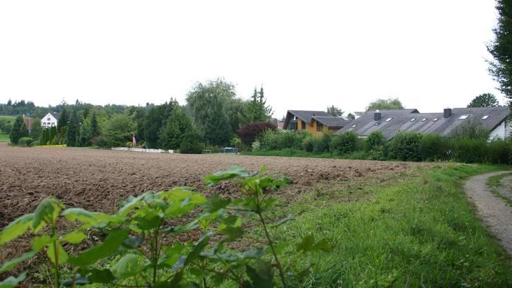 Nutzungsplanung Birrhard: Die Umzonung eines Geländestreifens, in dem sich heute Vorgärten befinden, gab zu reden.  lp