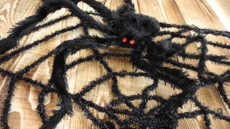 Diverse Spinnen trieben auf dem Stadtplatz ihr gruseliges Unwesen