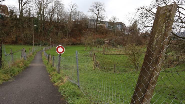 Auf diesem Weg in der Nähe des Schulhauses Winznau wurde das Mädchen angegriffen.