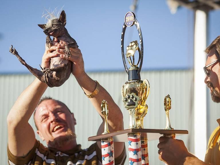 Hässlich ist gut: Die Freue über den Sieger ist gross beim Besitzer. KEYSTONE/EPA/PETER DASILVA