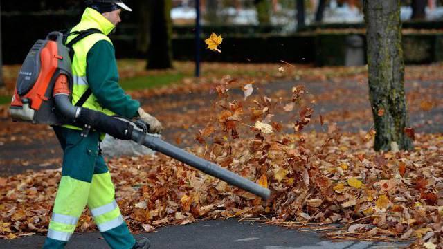 Kaum sind die Blätter am Boden, dröhnen die Laubgebläse. Foto: Keystone
