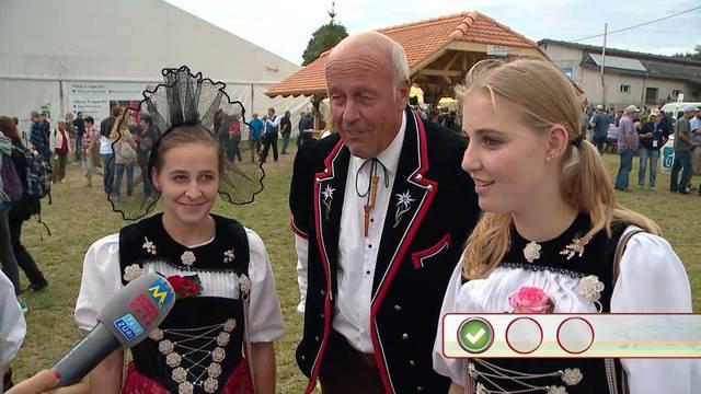Quizzenswert am Bernisch Kantonalen Schwingfest in Seedorf