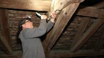 Raymond Kontic nimmt Holzproben und bestimmt damit das Alter der Balken.