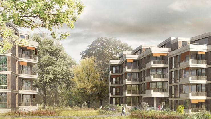 Visualisierung des Neubauprojekts, Michael Meier und Marius Hug Architekten.