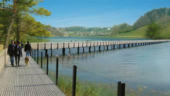 Vom Seewner See wurde eine Visualisierung erstellt. Gebaut wird er wohl noch lange nicht.