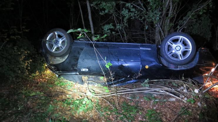 Der Autofahrer verletzte sich leicht und wurde ins Spital gebracht.