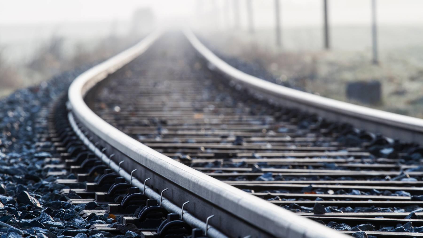 Das Auto blockiert momentan die Zuglinie der S23. (Symbolbild)