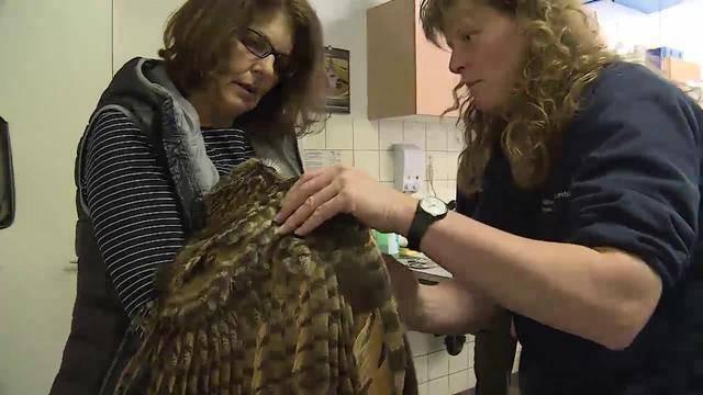 Aus dem Tierdörfli des Tierschutzvereins Olten-Solothurn und Umgebung
