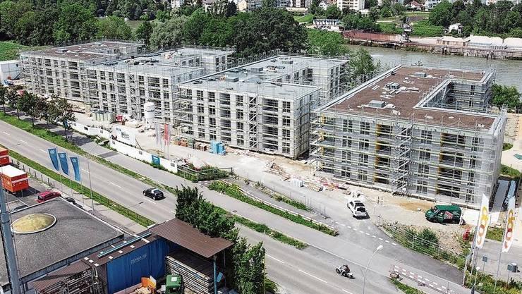 Im Fricktal wird weiter gebaut: In Rheinfelden entsteht der Salmenpark 2.