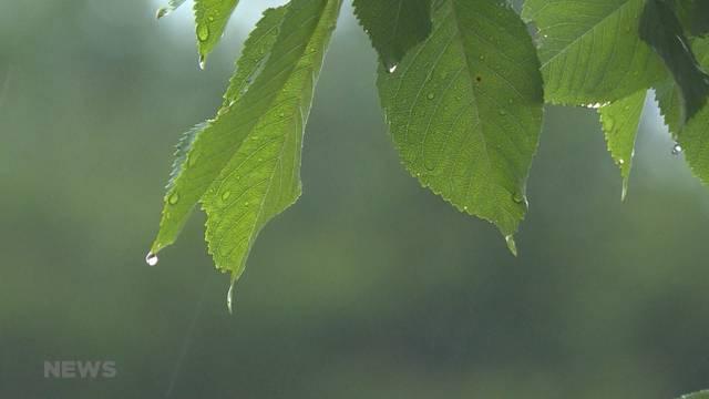Brienz fordert Bevölkerung zum Wassersparen auf