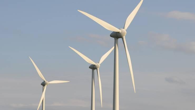 Am Dienstag trafen Promoter und Gegner des Windparks zum ersten Mal direkt aufeinander. (Symbolbild)
