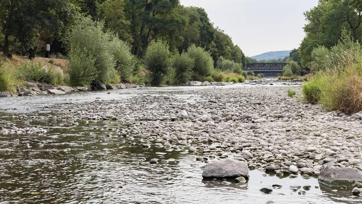 Zum Schutz gefährdeter Arten: Sofortiges Bade- und Betretverbot an den sensiblen Stellen der Wiese.