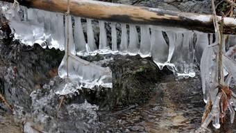 Der Kälteumbruch hat die Schweiz fest im Griff. Wie gehen Baselbieter Unternehmen und Institutionen mit den Minustemperaturen um?