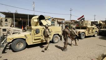 Irakische Einheiten im Zentrum Falludschas