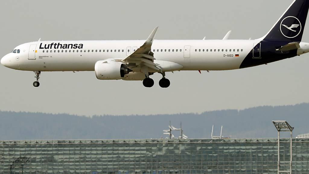 Lufthansa im Tiefflug (Archivbild)