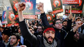 """Saudi-Arabien nannte die Verfahren gegen den Geistlichen und 46 andere Hingerichtete """"fair und gerecht""""."""