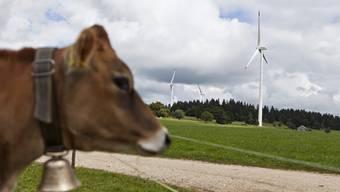 Eine Kuh grast zwischen den Turbinen am Mont Croisin.