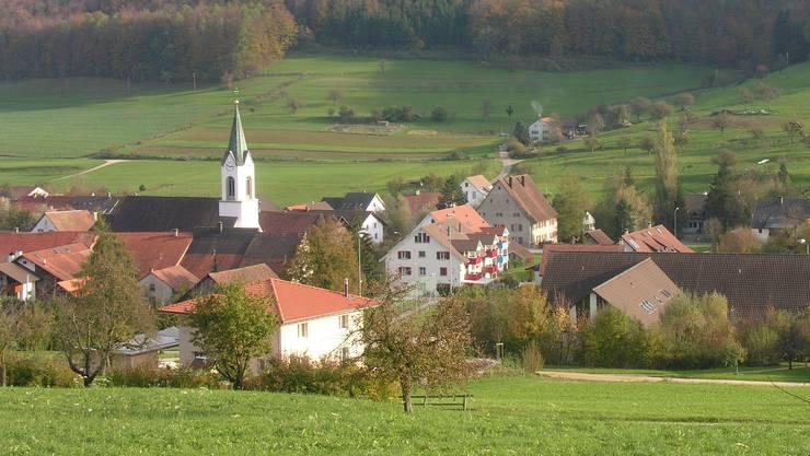 Ziel ist es laut Petitionstext, dass der Wittnauer Gemeinderat das Projekt Thierstein an der «nächstmöglichen Gemeindeversammlung» traktandiert.