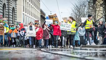 Die ökologischen Anliegen der Klima-Jugend finden auch im neuen Parlament mehr Resonanz.