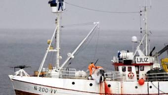 Dieses Foto von Tierschützern zeigt ein norwgisches Walfangboot. (Archiv)