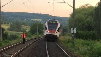 Der Regionalzug fuhr in eine Schafherde.
