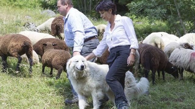 Bundesrätin Doris Leuthard und Jean-Pierre Vittoni, Züchter von Herdeschutzhunden, auf der Alp Creux de Champ