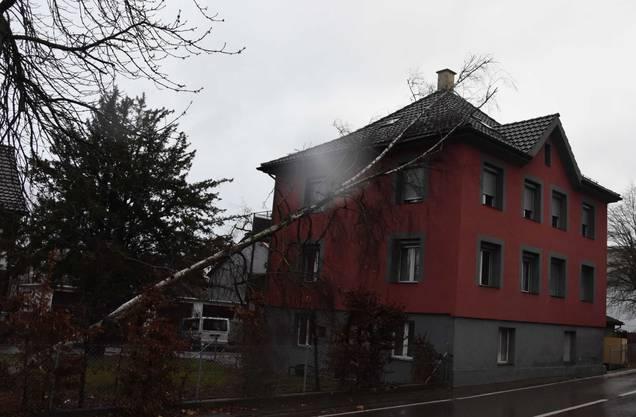 In Flawil (SG) stürzt ein Baum auf ein Haus.