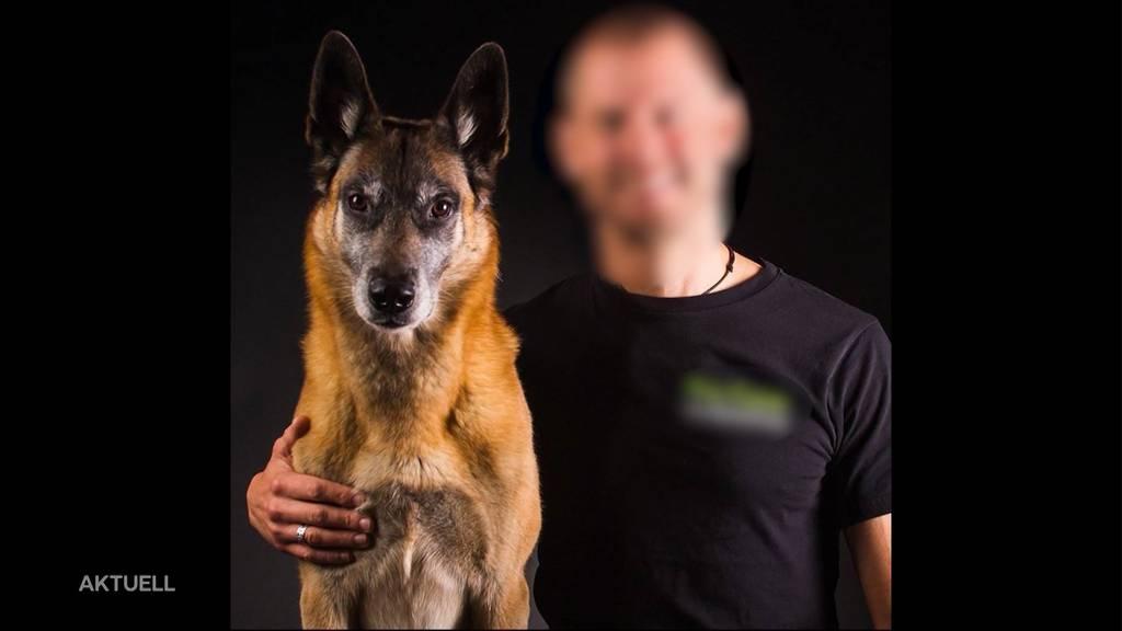 Hundetrainer von Schäfer gebissen: Polizei erschiesst den Hund