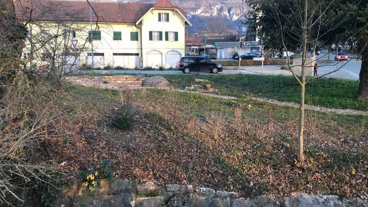 Bei der Bushaltestelle an der Kreuzung zum «Ladedorf» wurde ein Grundstück renaturiert.