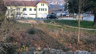 Renaturierung Langendorf