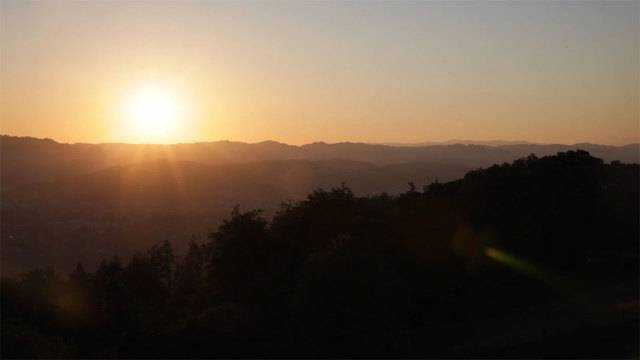 Gewusst? Fünf Fakten zur Sonnenwende