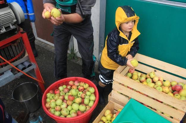 Apfelmostproduktion