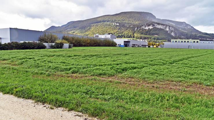 In der Oensinger Industriezone erweitert die Agmento ihre Logistik- und Industriehalle durch eine zweite Liegenschaft.