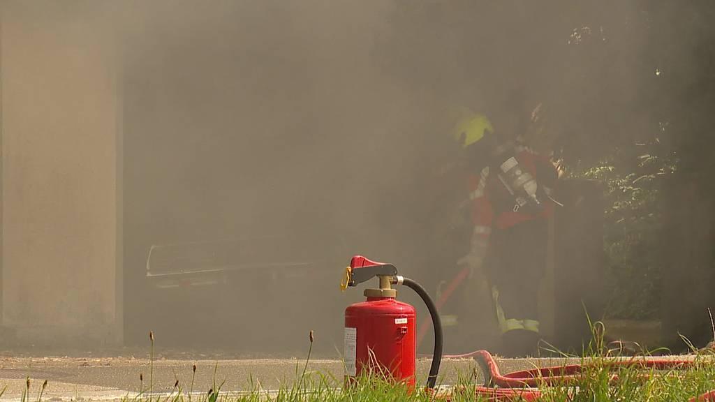Kurznachrichten: Autobrand, Unfälle, Kuh in Sportgeschäft