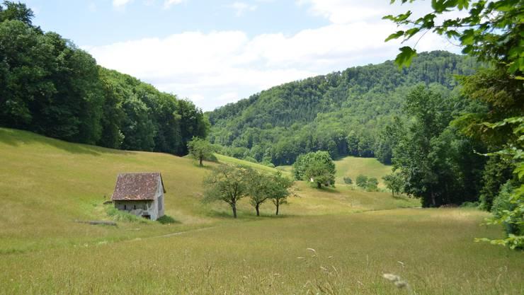 Einsam im Tal gelegen - Eichbüchel ob den Weiden bei Bennwil