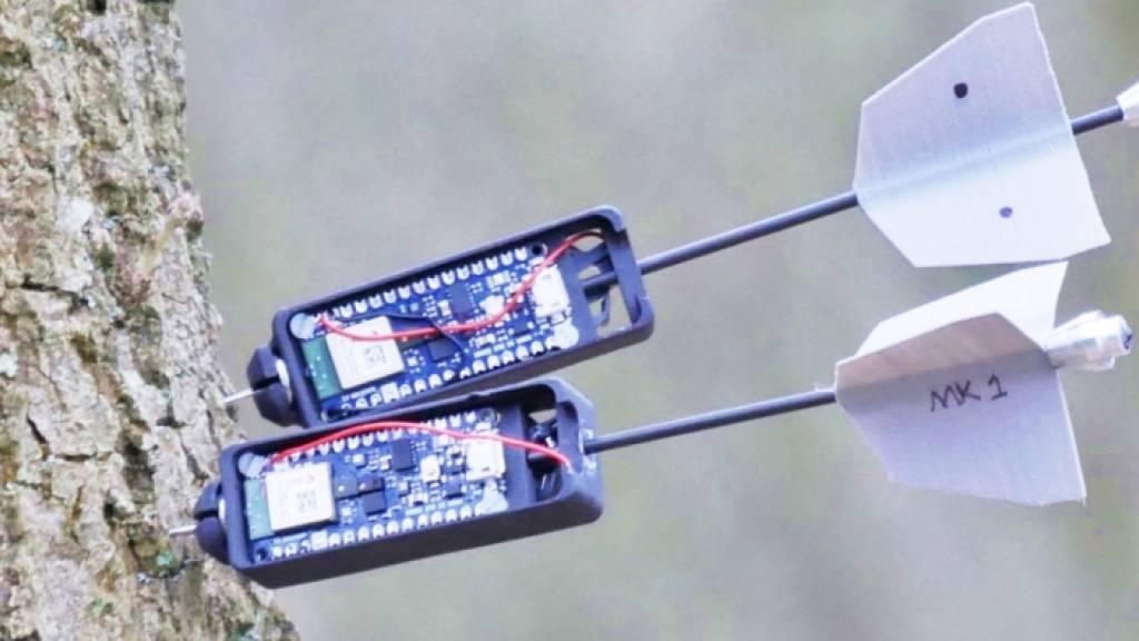 Drohnen vermessen Gesundheitszustand des Waldes