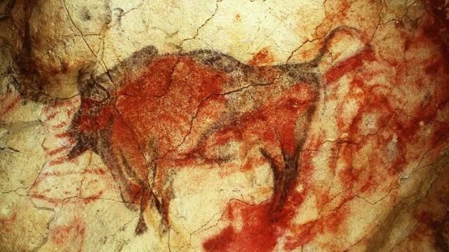 Wohl eine der bekanntesten Tierzeichnungen der Steinzeit: ein Bison in der Höhle von Altamira, Nordspanien (Symbolbild)