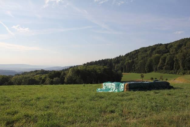 Berg-Pool statt Feuerwerk: Bei der Linner Linde laufen die Vorbereitungen für die 1.-August-Feier.