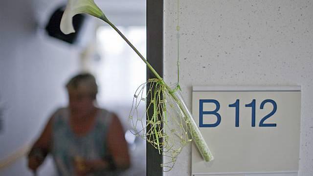 Eine Blume an der Zimmernummer in der Palliativabteilung einer Klinik (Symbolbild, Archiv)
