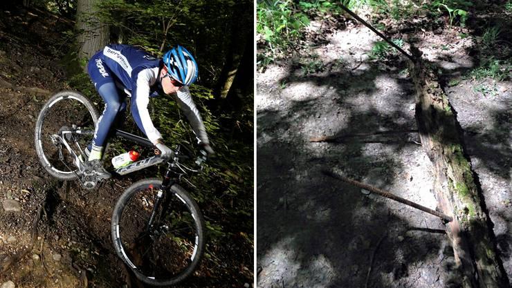 Im Gränicher Weiler Rütihof wurde ein Baumstamm mit Armierungseisen abgelegt