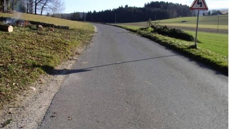 Das Leben von Verkehrsteilnehmern gefährdet: Unbekannte haben im Kanton Freiburg Tannen umgesägt und auf die Strasse fallen lassen.
