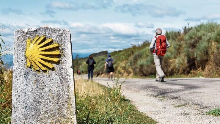 Die Jakobsmuschel, manchmal auch ein einfacher gelber Pfeil, weist den Pilgern den Weg nach Santiago de Compostela.