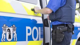 Eine mutmassliche Brandstifterin wurde festgenommen.
