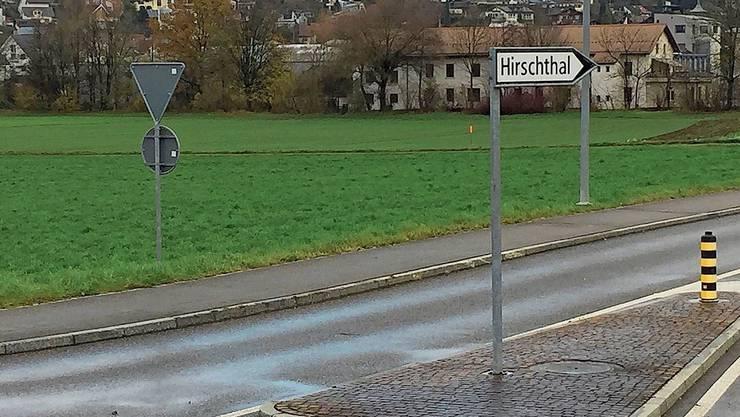 Diese Wiese zwischen Suhrentalstrasse und Suhre soll eingezont werden.