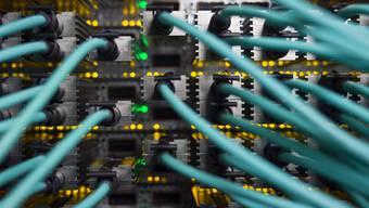 Netzwerkkabel an einem Grossrechner (Symbolbild)