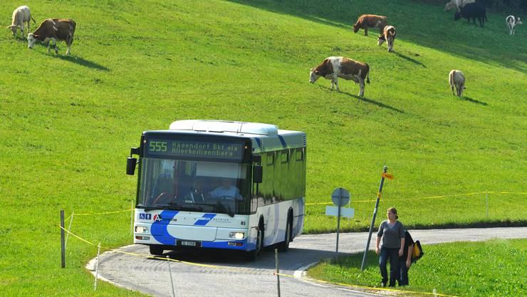 Inskünftig fahren mehr Busse auf den Allerheiligenberg.