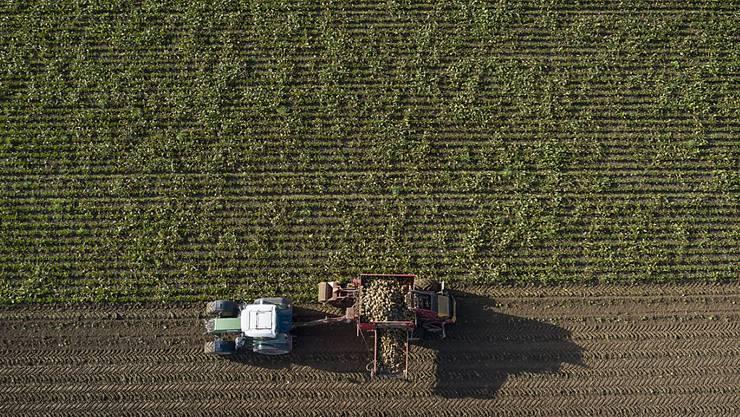 Der Handelskrieg hinterlässt auch bei Hersteller von Landmaschinen seine Spuren. (Archivbild)